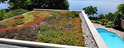 green roof designs ca green roof design install maintenance · e