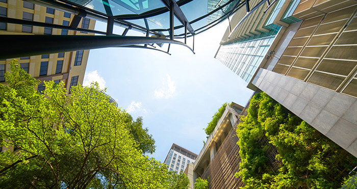 Low angle shot of modern glass buildings and green with clear sk